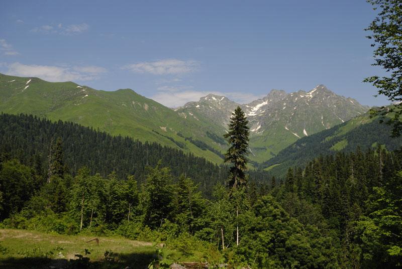 Аджара (2907 м.). Абхазия.